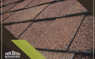 Repair or Replace: Common Problems With Asphalt Shingles