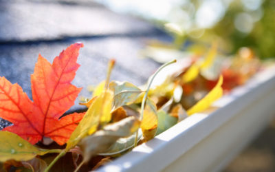 3 Fall Roof Maintenance Tips